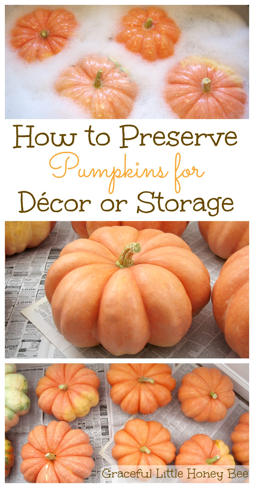 how to preserve pumpkins for décor or storage graceful little